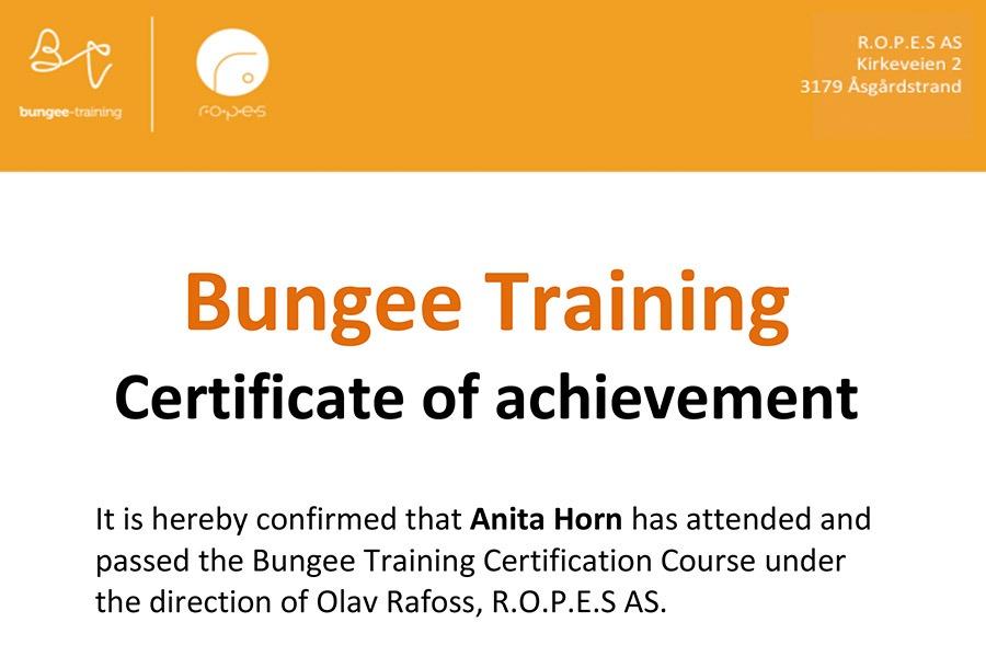 Trainer-Zertifikat R.O.P.E.S